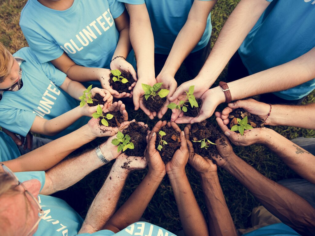 Group of volunteers put hands together while holding a plant in hands